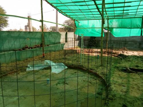 freshwater biofloc fish farming Setup -1